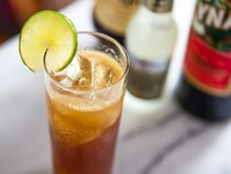 Amaro and ginger beer highball (Italian buck)