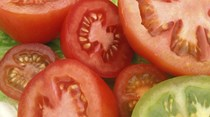 Big tomato sweet-sour salad