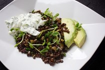 Black lentil salad with tzatziki, avocado, and pea shoots