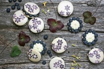 Cardamom macarons with blueberries and cream cheese