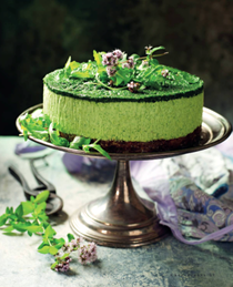 Cashew rocket-powered cheesecake