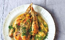 Chicken with dill and leeks