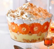 Bbc good food magazine november 2016 eat your books eggnog trifle page 210 from bbc good food forumfinder Gallery
