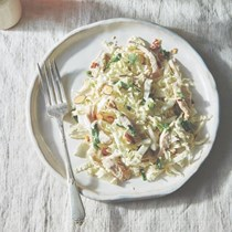 Featherweight slaw