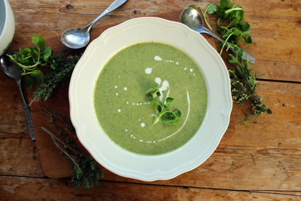 celeriac and watercress soup