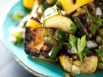 Grilled summer squash with chimichurri