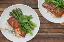 Indian spiced salmon with minty yoghurt