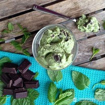 Keto mint chocolate chip ice-cream