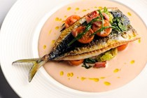 Mackerel, tomato & samphire salad [Nathan Outlaw]