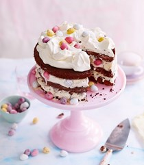 Mini egg ice cream chocolate layer cake