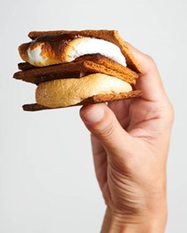 Ooey gooey indoor s'mores