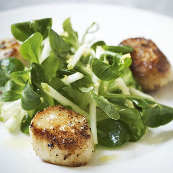 Gordon ramsays home cooking everything you need to know to make pan fried scallops with crunchy apple salad fandeluxe Gallery