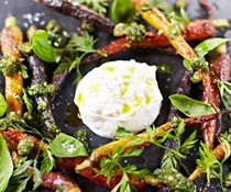 Roasted carrots with carrot-top pesto and burrata