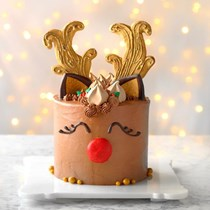 Rudolph the red-nosed cake