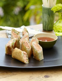 Salmon and ginger spring rolls