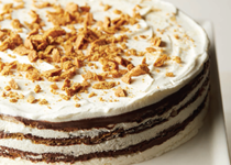 S'more icebox cake