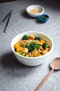 Spicy noodles with tofu and broccoli