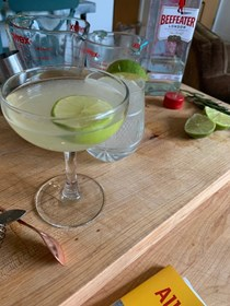 The rosemary gimlet